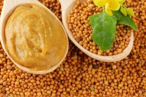 Massage Mustard Oil into knee injuries for a natural remedy